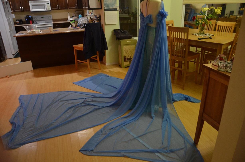 The dress from frozen - Dsc_2890