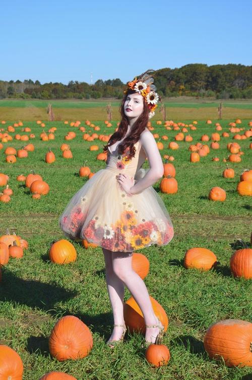 fall fairy 2 resize
