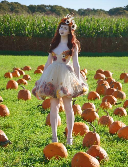 fall fairy 6 resize