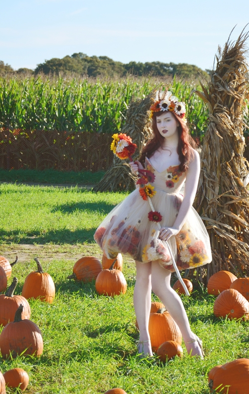 Fall fairy resize 11